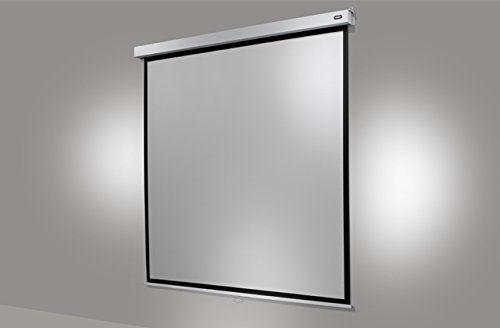 celexon rollo pro plus 200 x 200 cm manuelle leinw beamerleinwand24. Black Bedroom Furniture Sets. Home Design Ideas