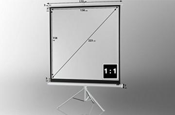 celexon Stativleinwand Economy 158 x 158 cm - White Edition -