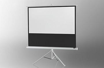 celexon Stativleinwand Economy 244 x 138 cm - White Edition -