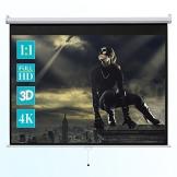 ivolum Rolloleinwand 240 x 240cm Nutzfläche | Format 1:1 | Als Heimkino-Leinwand oder Business-Leinwand einsetzbar | einfach Montage und Bedienung | Beamer-Leinwand in verschiedenen Größen erhältlich -